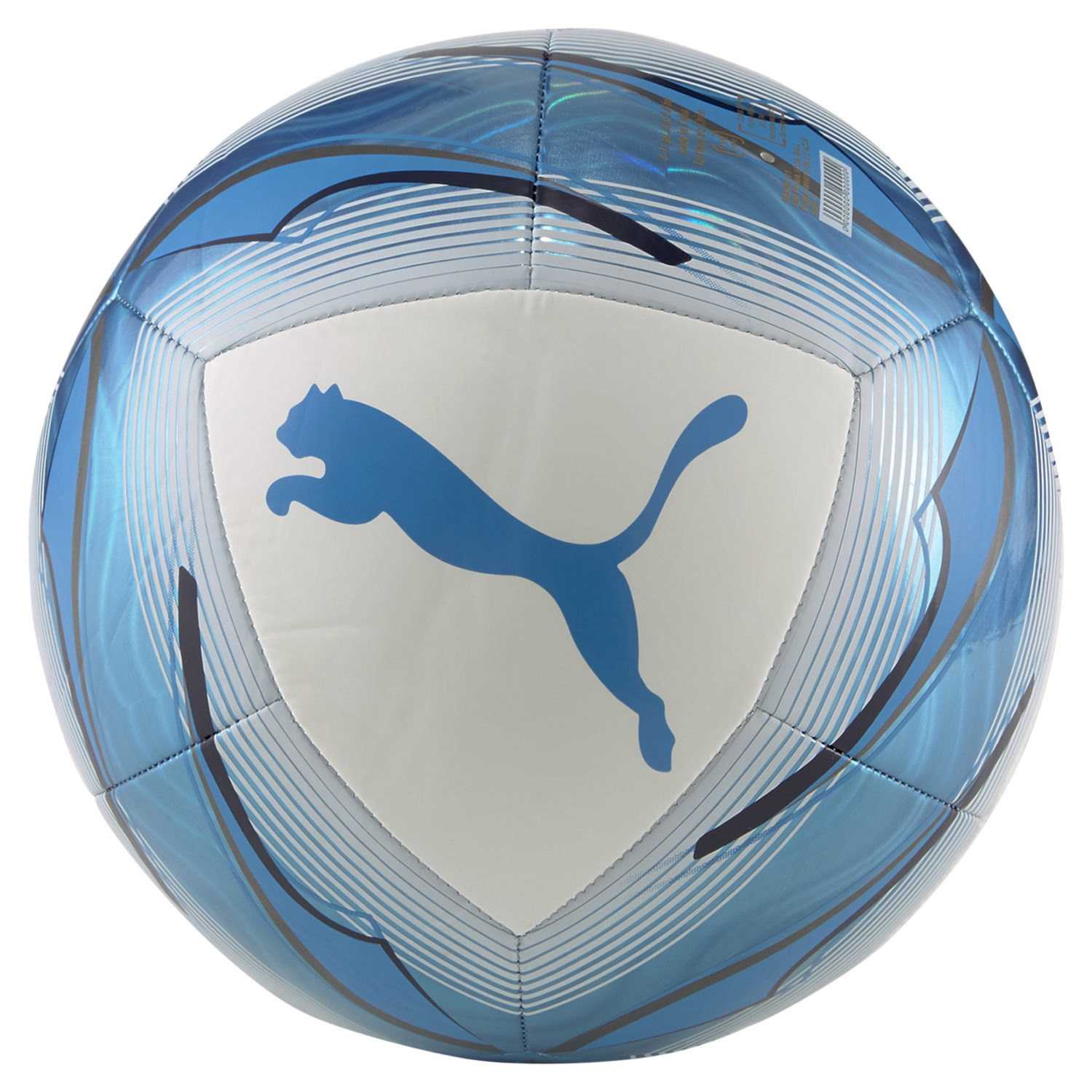Ballon de Foot Puma OM Icon White