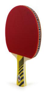 Raquette de Tennis de Table Karakal KT300